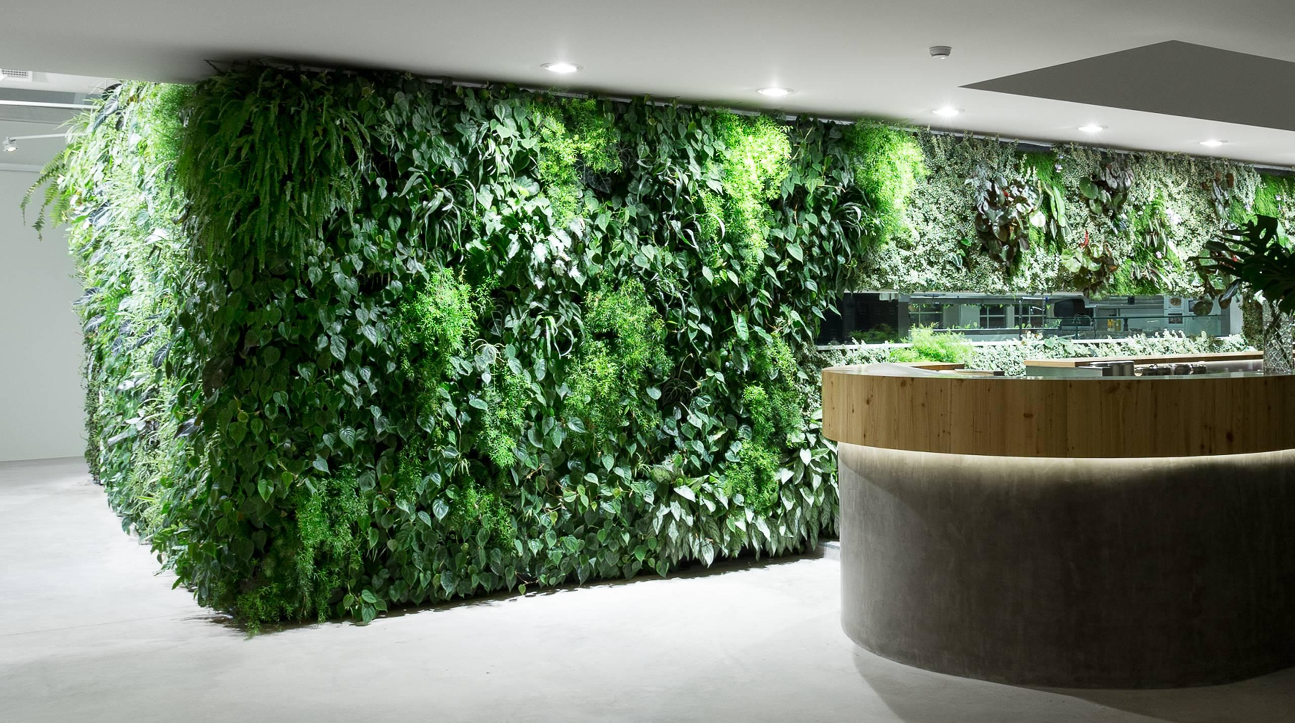 Verticale plantenwand binnen Central Park Concepts