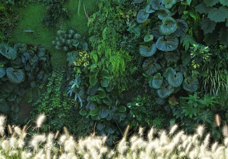 Groene gevels van Central Park Concepts