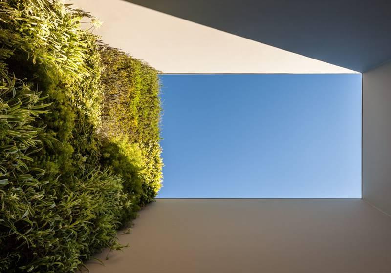 Plantenwand van Central Park Concepts
