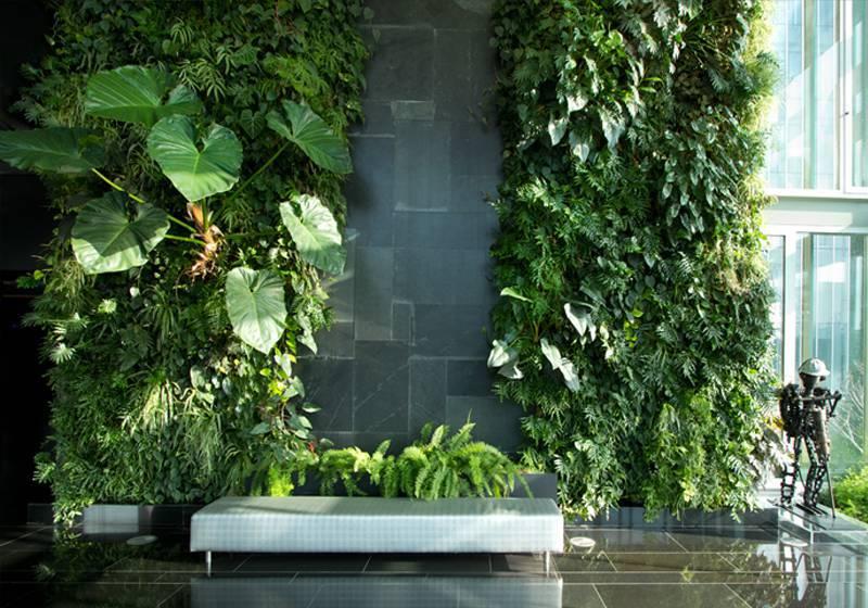 Verticale plantenwand met waterval binnen kantoor
